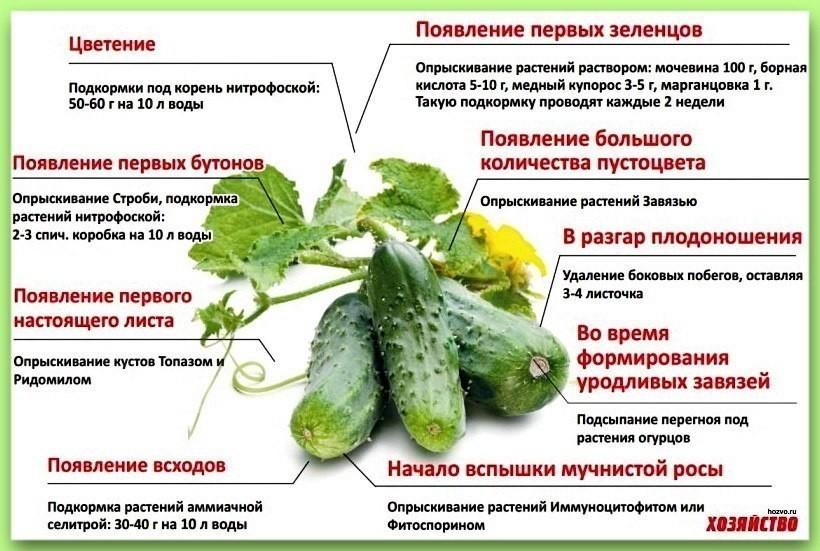 http://s5.uploads.ru/0ca37.jpg