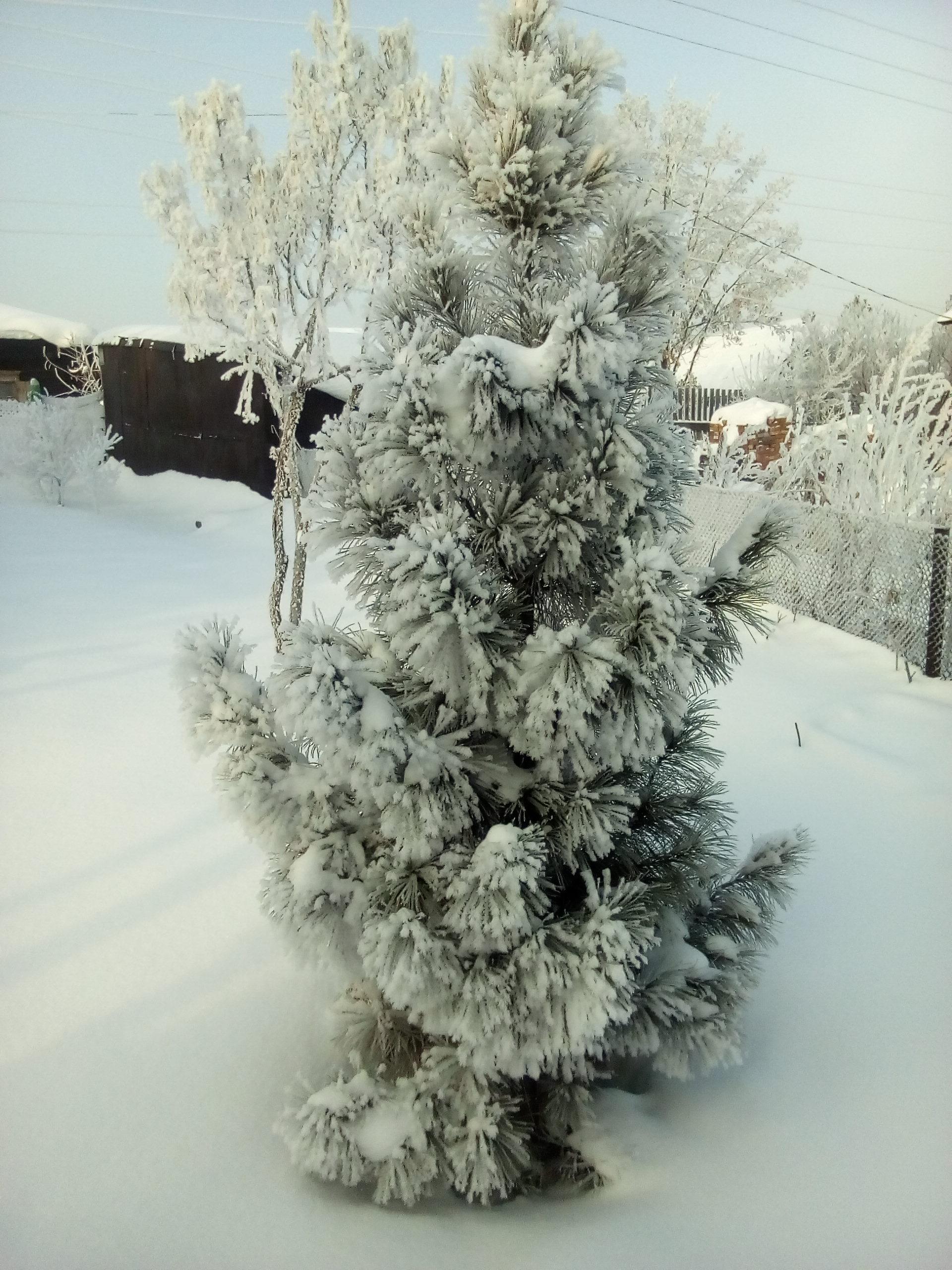 http://s5.uploads.ru/0yqnb.jpg