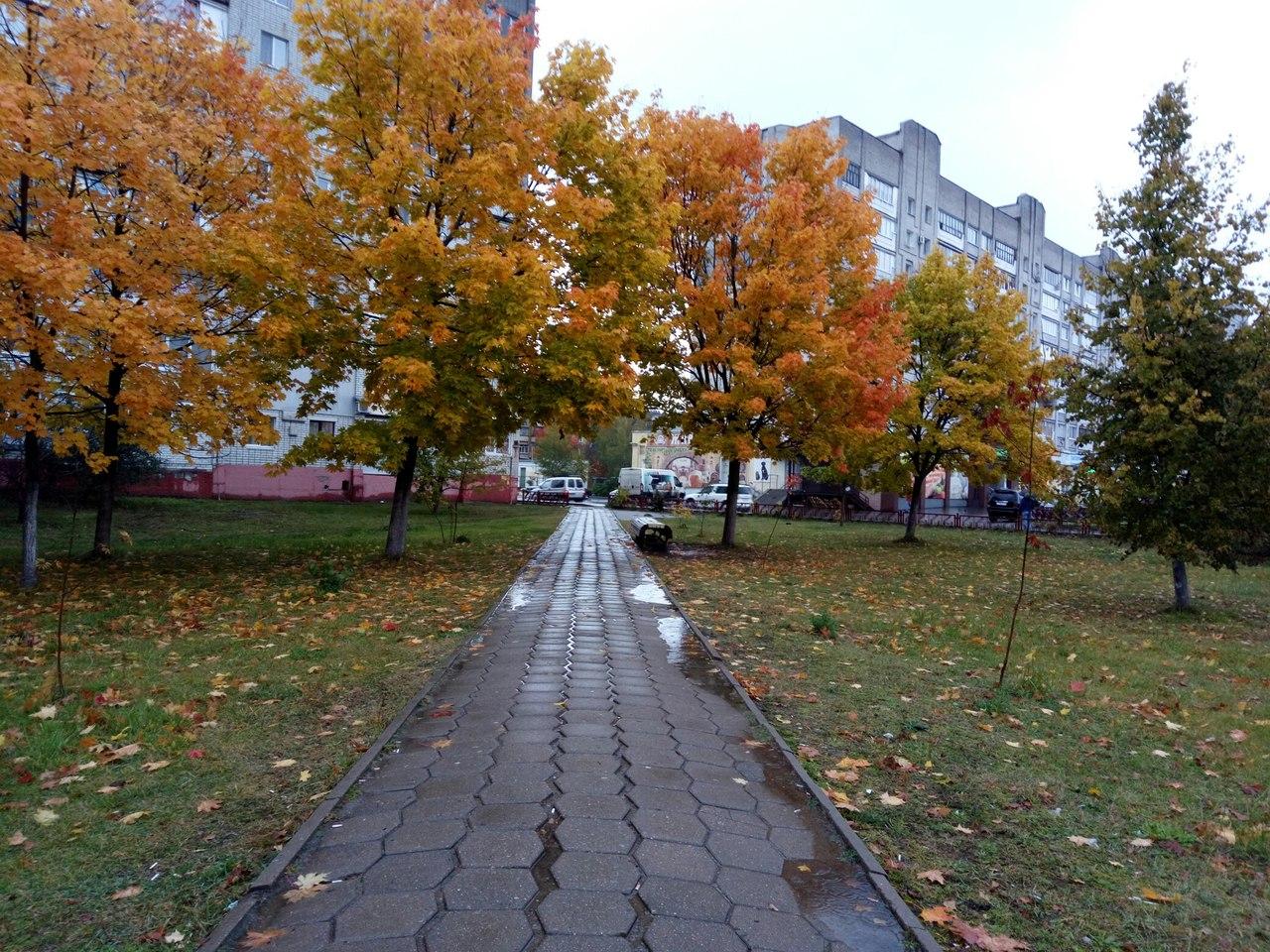 http://s5.uploads.ru/3KnUg.jpg