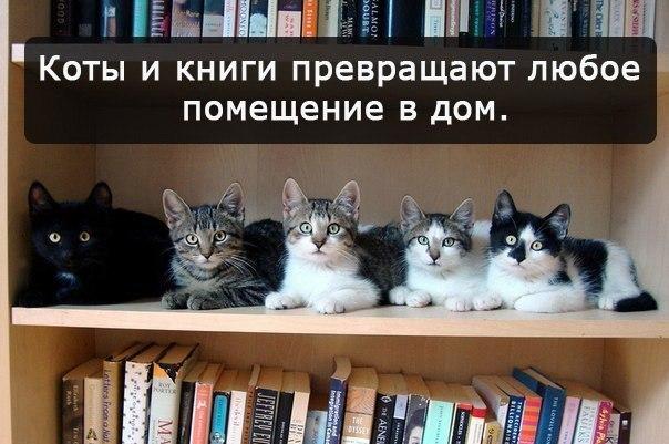 http://s5.uploads.ru/4t3Be.jpg