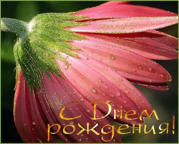 http://s5.uploads.ru/6CHQ8.jpg