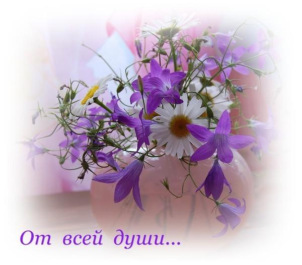 http://s5.uploads.ru/6hLau.jpg