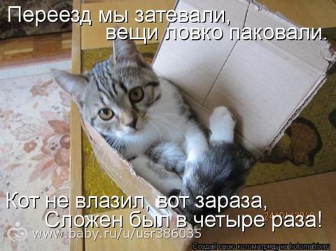 http://s5.uploads.ru/6y7n2.jpg
