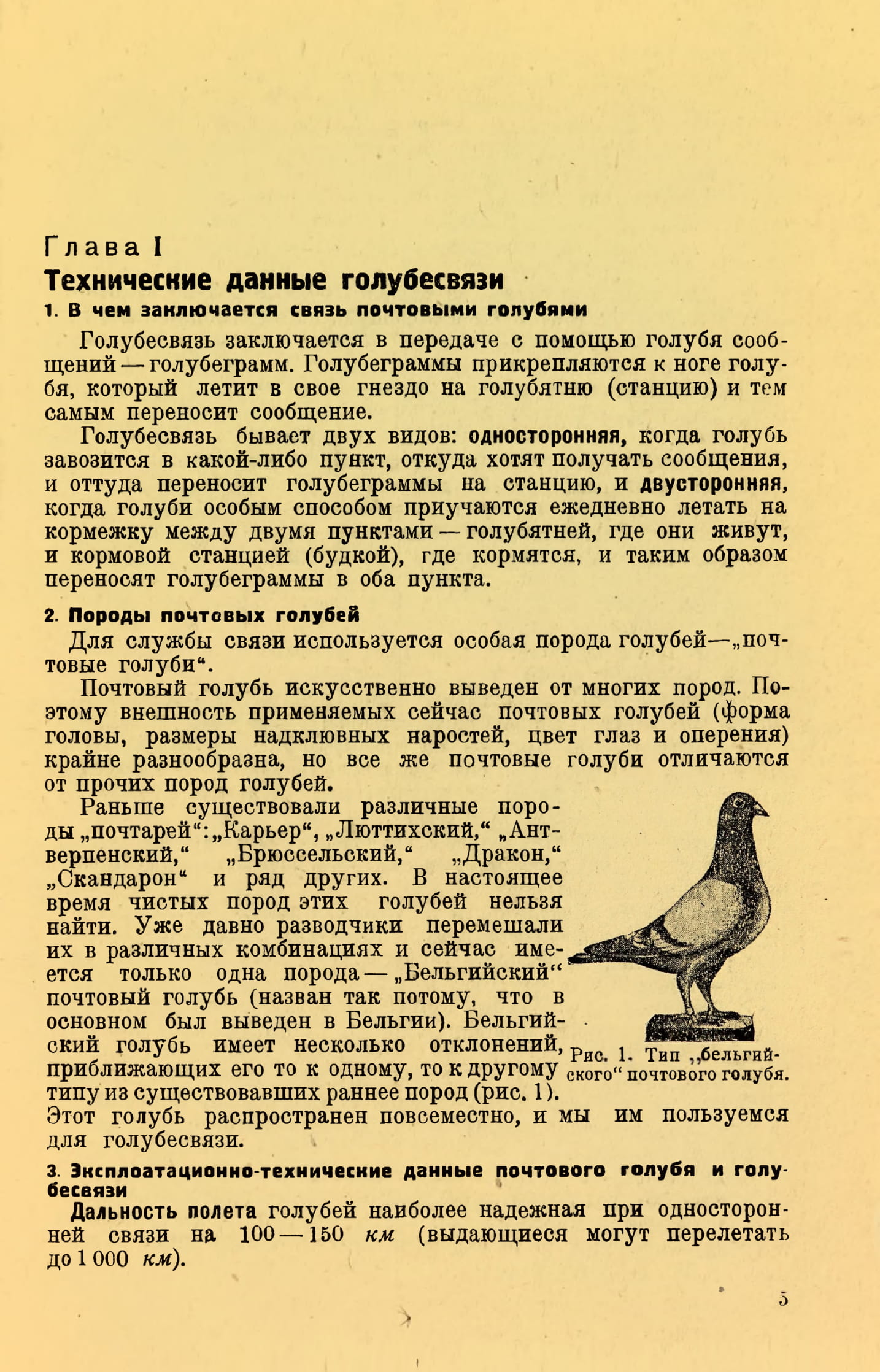http://s5.uploads.ru/86DJU.jpg