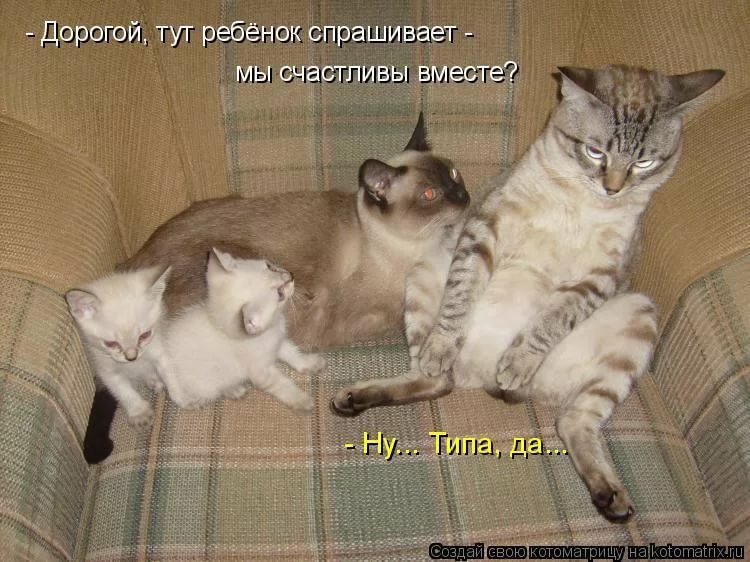http://s5.uploads.ru/8IJMP.jpg