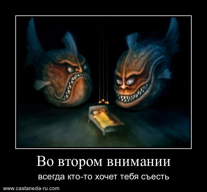 http://s5.uploads.ru/9yXfD.jpg