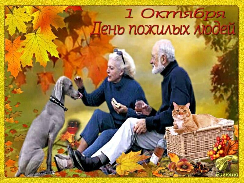 http://s5.uploads.ru/AGPdJ.jpg