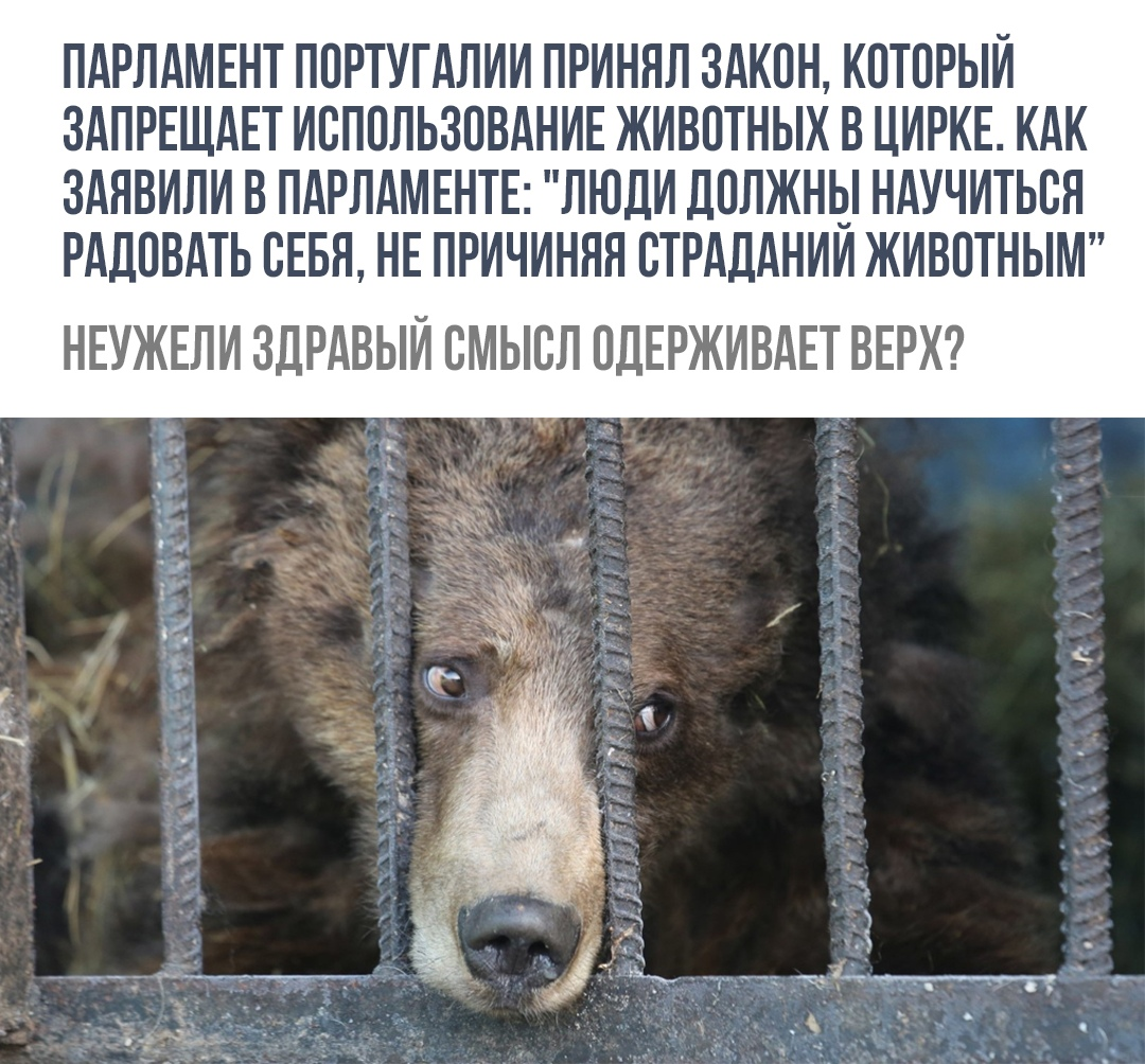 http://s5.uploads.ru/BR20V.jpg