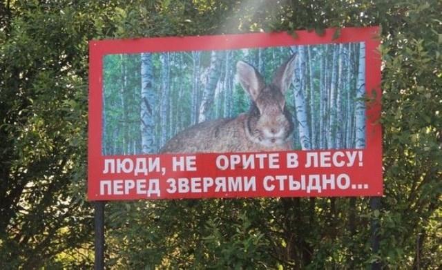 http://s5.uploads.ru/BnJ9f.jpg
