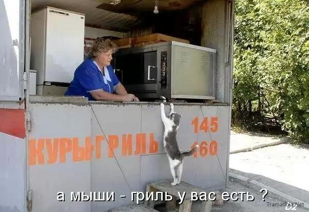 http://s5.uploads.ru/DTSCL.jpg