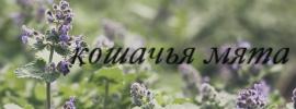 http://s5.uploads.ru/EafCP.jpg