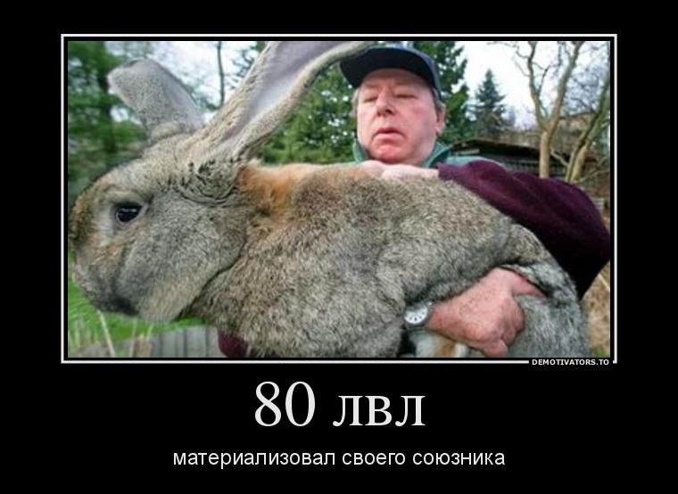 http://s5.uploads.ru/EmwYl.jpg