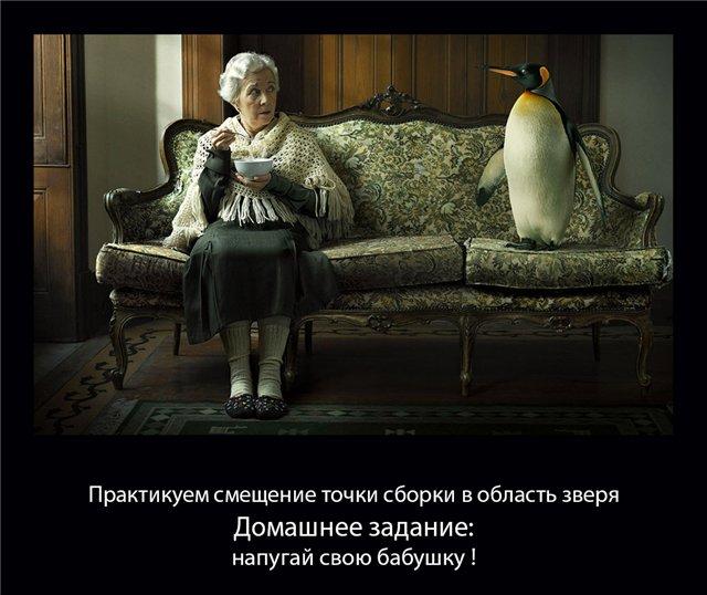 http://s5.uploads.ru/EyDzc.jpg