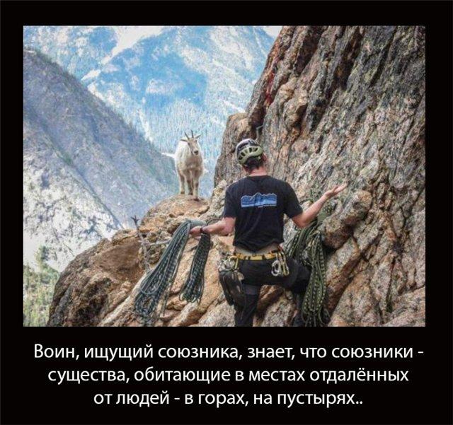 http://s5.uploads.ru/FJWts.jpg