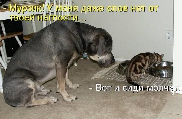 http://s5.uploads.ru/FkRY0.jpg