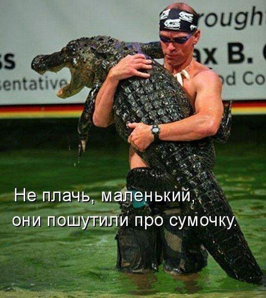http://s5.uploads.ru/IQ4uG.jpg