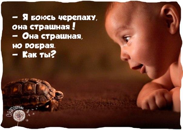 http://s5.uploads.ru/Jgo1Z.jpg