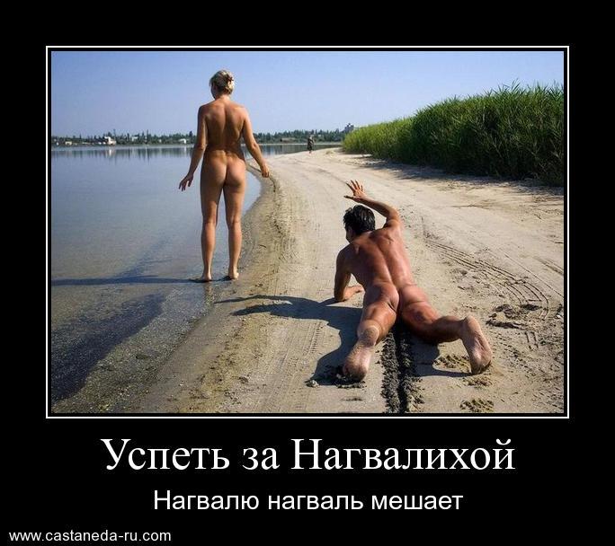 http://s5.uploads.ru/KqdTm.jpg