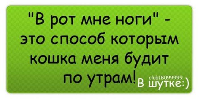 http://s5.uploads.ru/MnfLG.jpg