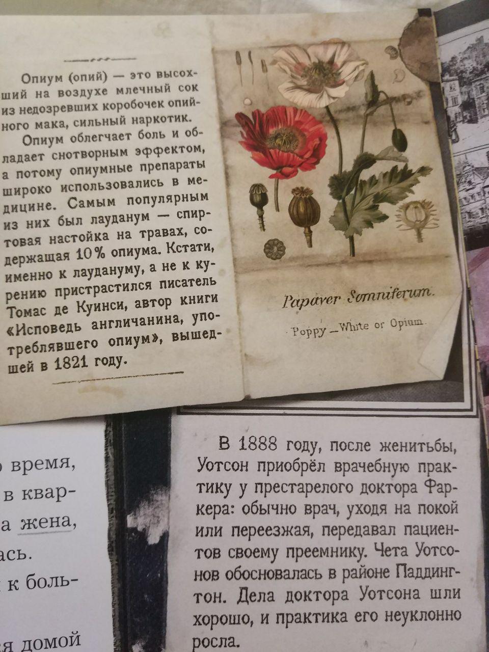 http://s5.uploads.ru/NB2v5.jpg