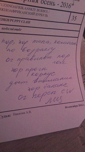 http://s5.uploads.ru/OS9UA.jpg
