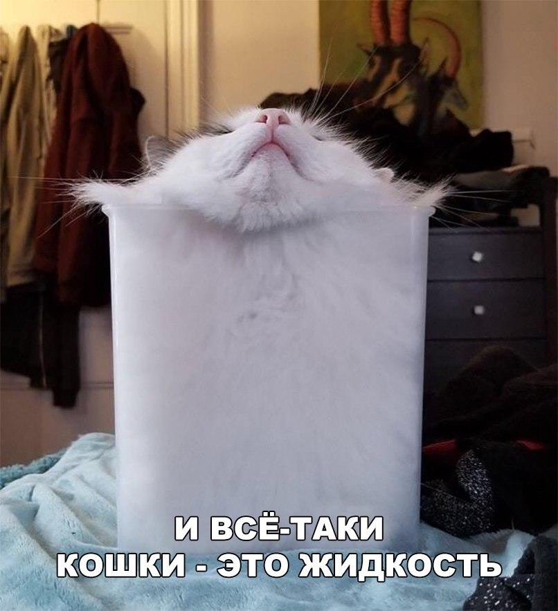 http://s5.uploads.ru/PtY5k.jpg