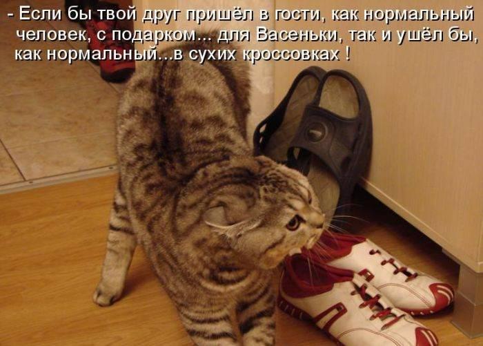 http://s5.uploads.ru/QFGN5.jpg
