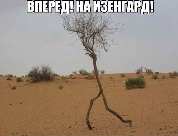http://s5.uploads.ru/RP2bF.jpg