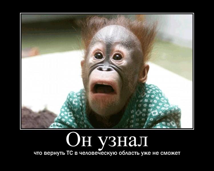 http://s5.uploads.ru/SjZvl.jpg