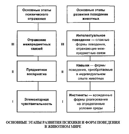 http://s5.uploads.ru/WoxnN.png