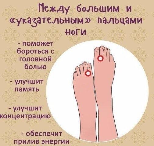 http://s5.uploads.ru/X5ENK.jpg