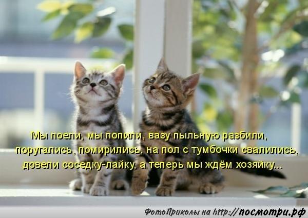 http://s5.uploads.ru/Xmluf.jpg