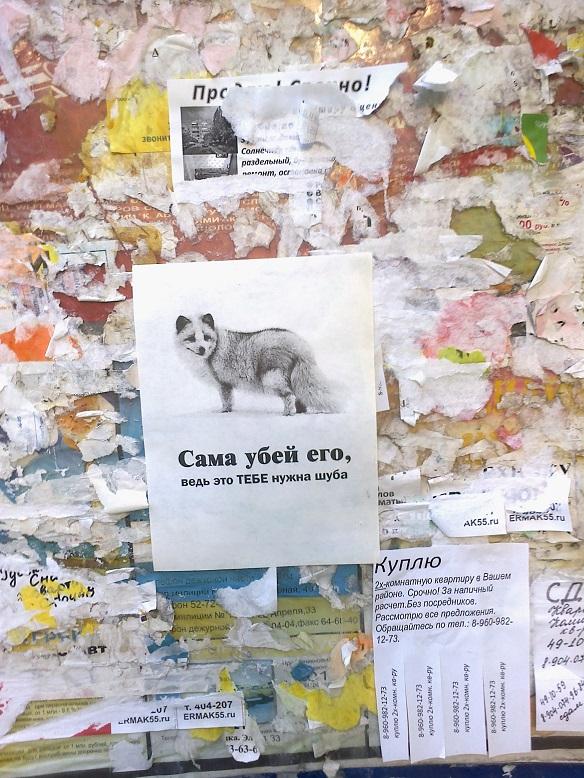 http://s5.uploads.ru/YatTe.jpg