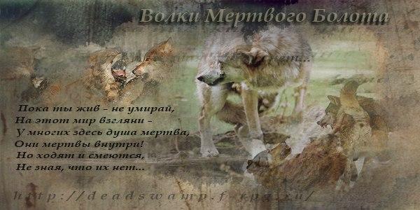 http://s5.uploads.ru/ZecRX.jpg