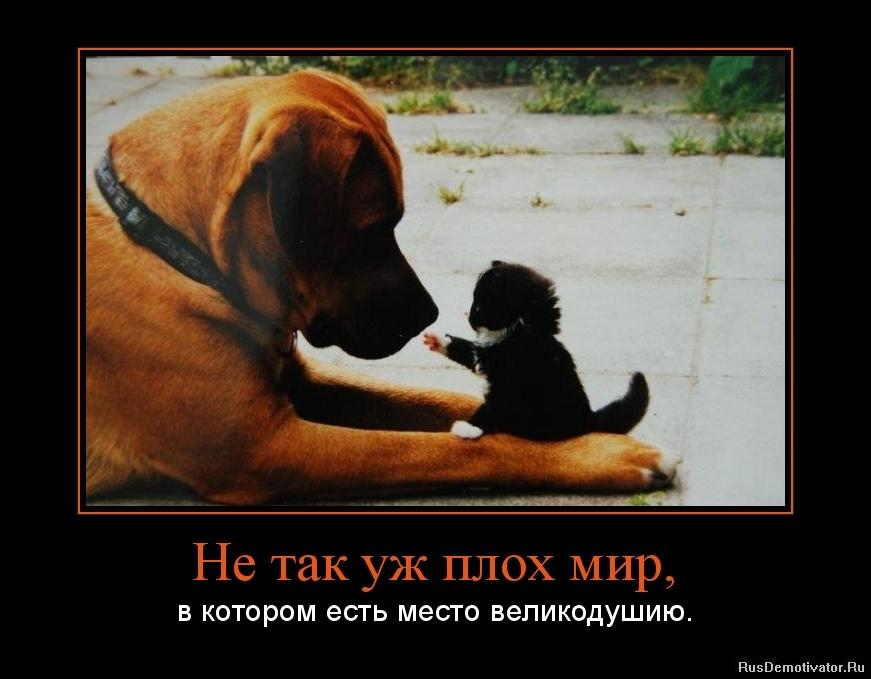 http://s5.uploads.ru/bQxaw.jpg