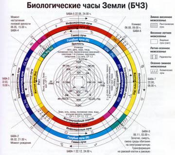 http://s5.uploads.ru/bZfYe.jpg