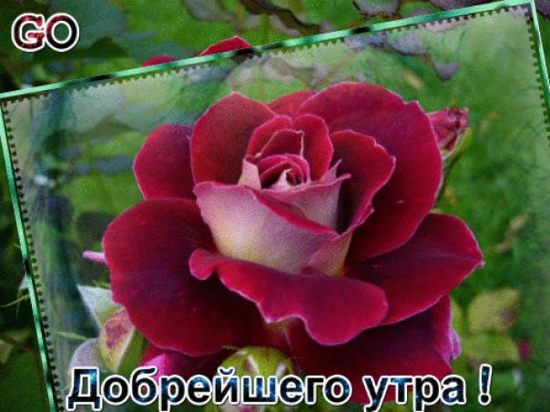 http://s5.uploads.ru/daTJb.jpg