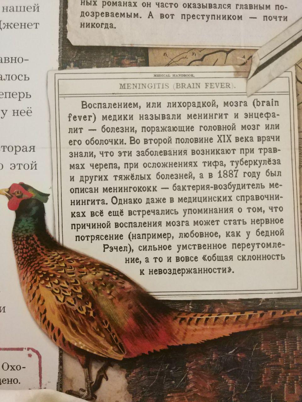 http://s5.uploads.ru/f0gX8.jpg