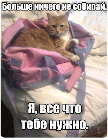http://s5.uploads.ru/fckAK.jpg