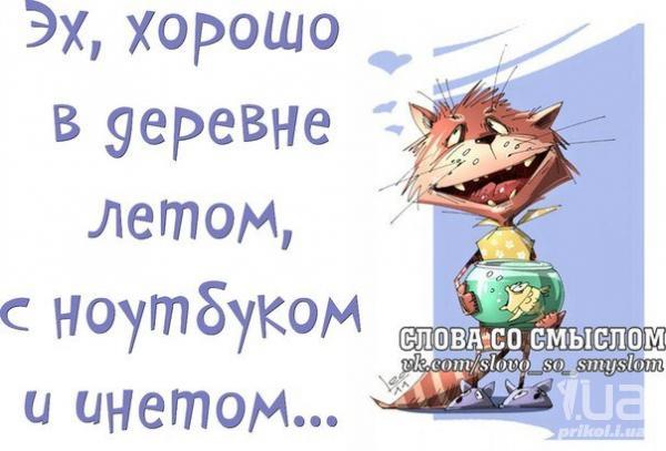 http://s5.uploads.ru/jsY73.jpg