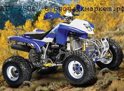квадроцикл irbis atv250s, фото