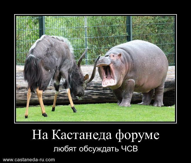 http://s5.uploads.ru/kXliK.jpg