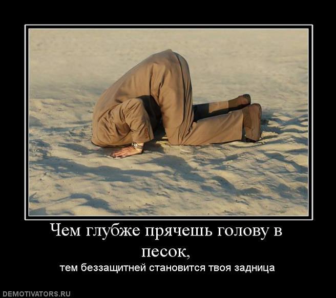 http://s5.uploads.ru/l3gTz.jpg
