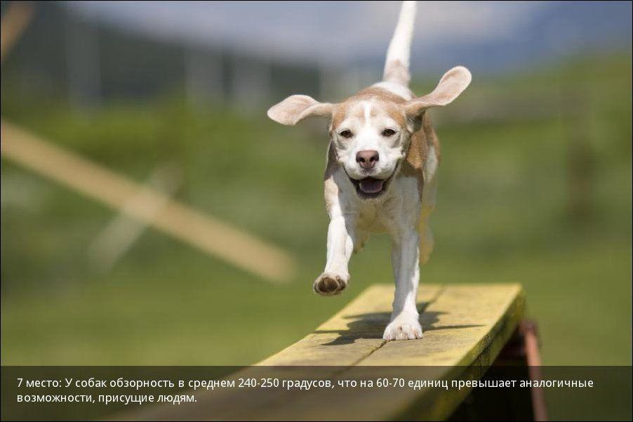 http://s5.uploads.ru/lQA4Y.jpg