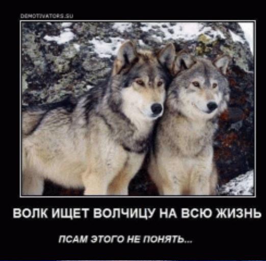 http://s5.uploads.ru/lTB9D.png