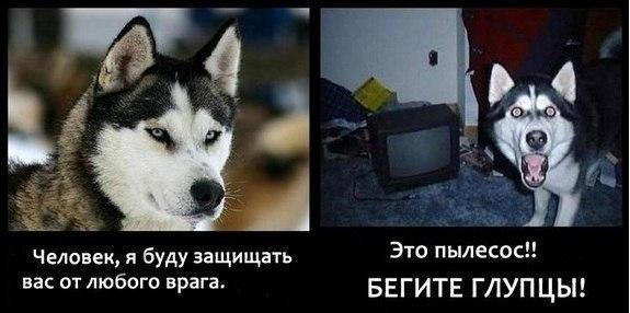 http://s5.uploads.ru/mWZ5G.jpg
