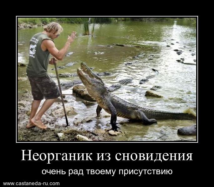 http://s5.uploads.ru/n4WJh.jpg