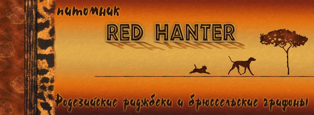 http://s5.uploads.ru/nBKWQ.jpg