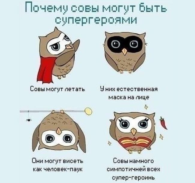 http://s5.uploads.ru/oA2aQ.jpg