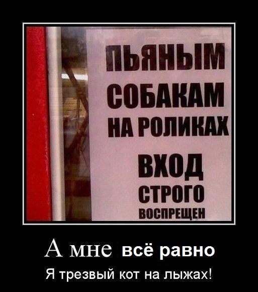 http://s5.uploads.ru/pEJ3S.jpg